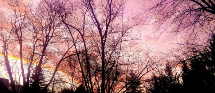 Clouds Foretell Changing Weather | Outside My Window